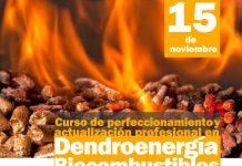 curso-de-dendroenergía biocombustibles