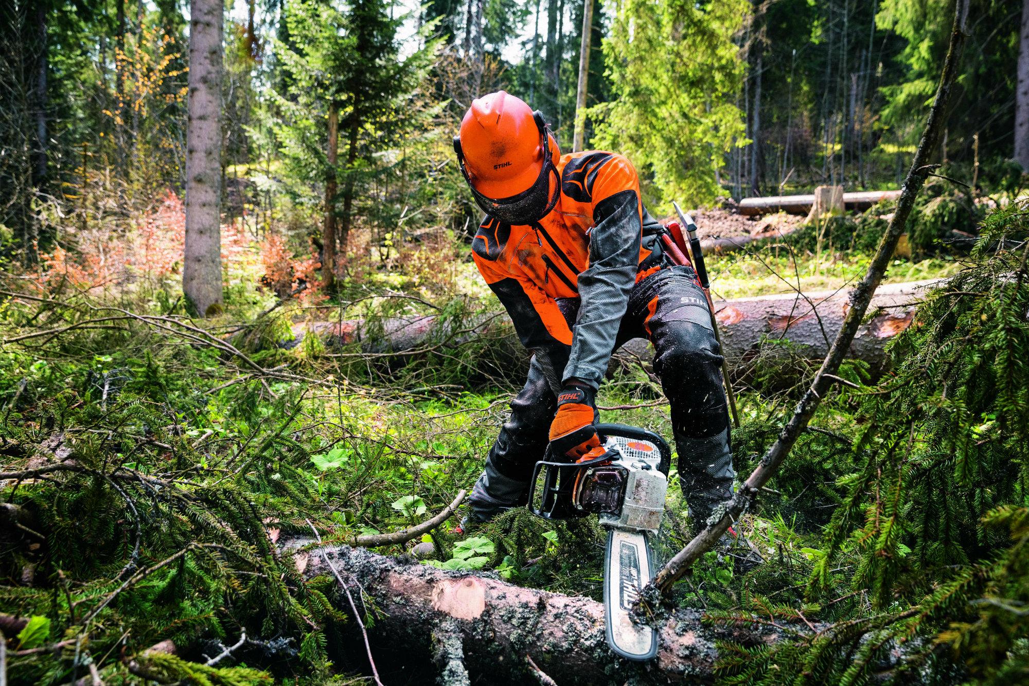 Stihl maquinaria forestal