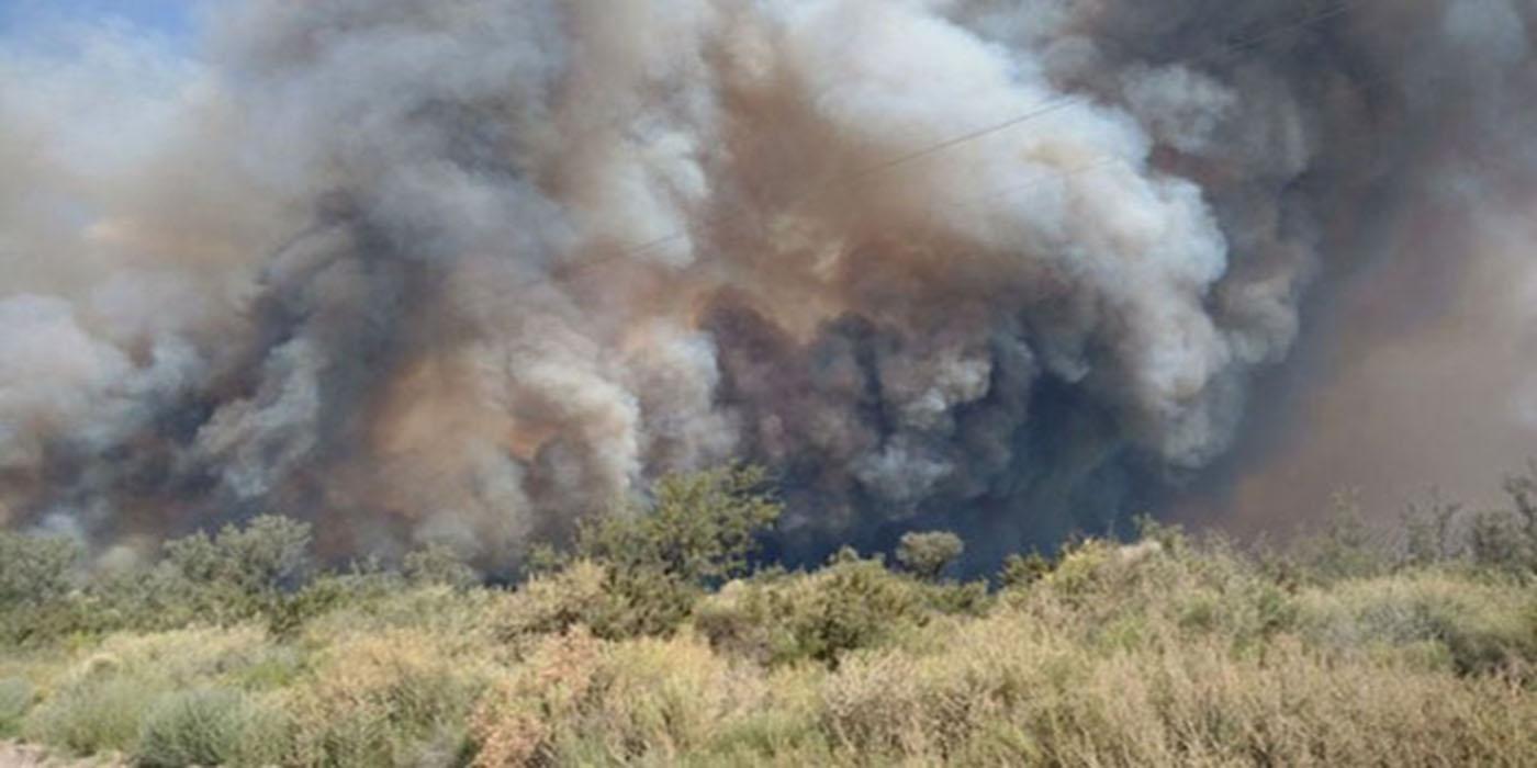 incendios forestales mendoza