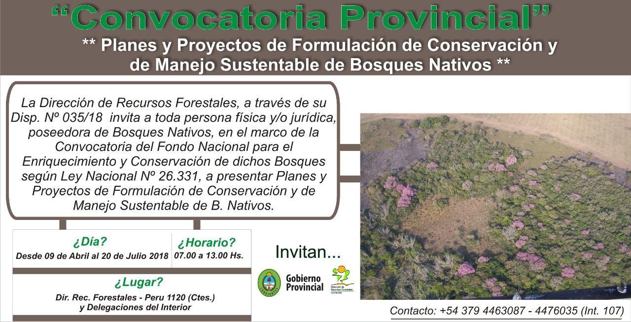 Bosques Nativos