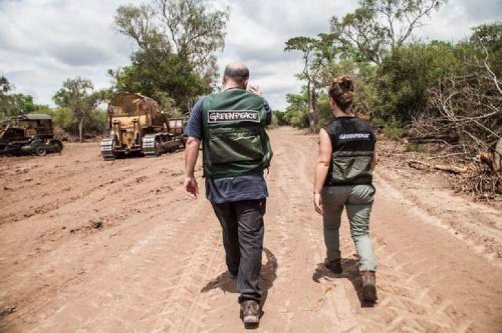 ley bosques desmontaron 2,4 millones has.