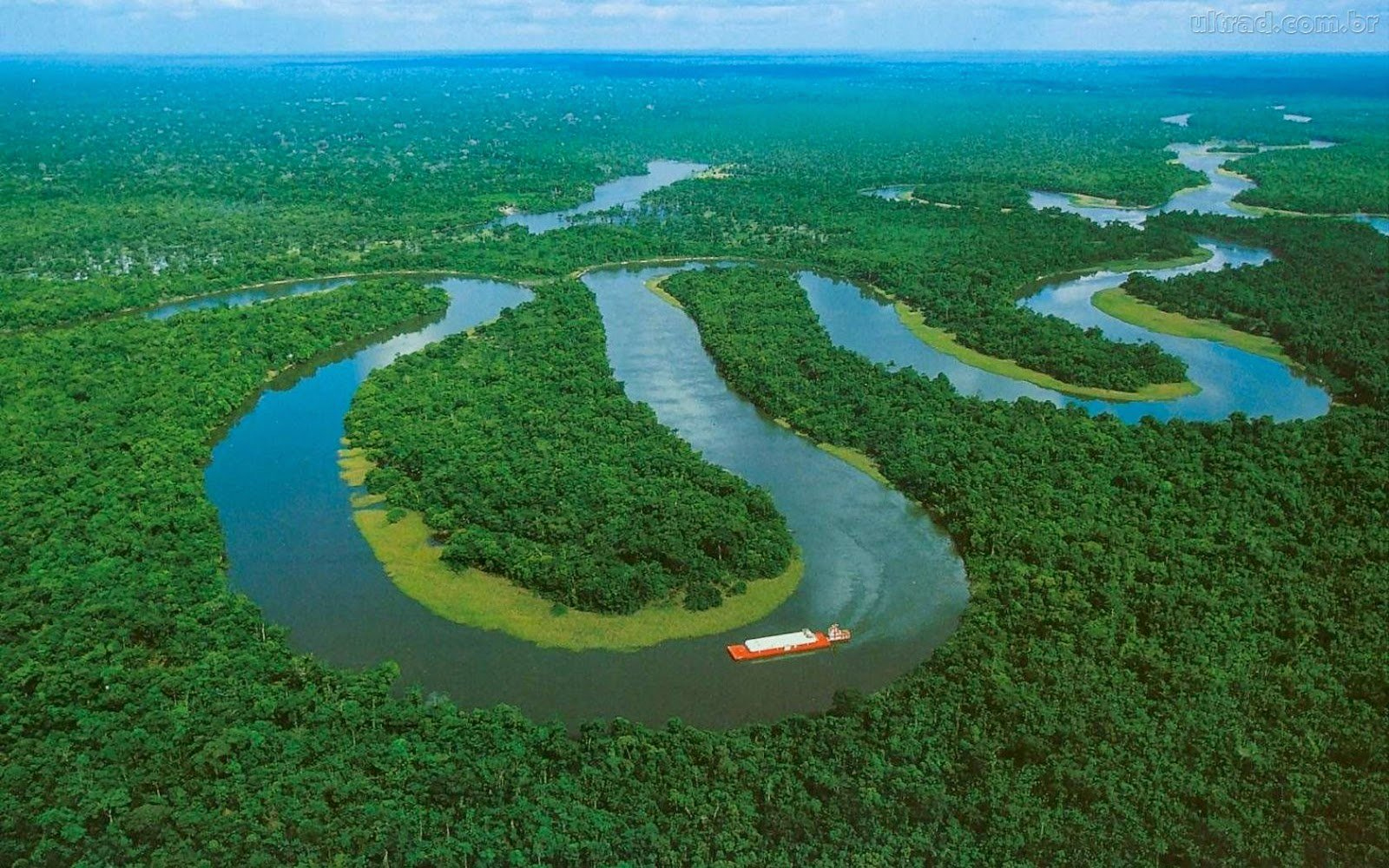 desmonte amazonía peruana