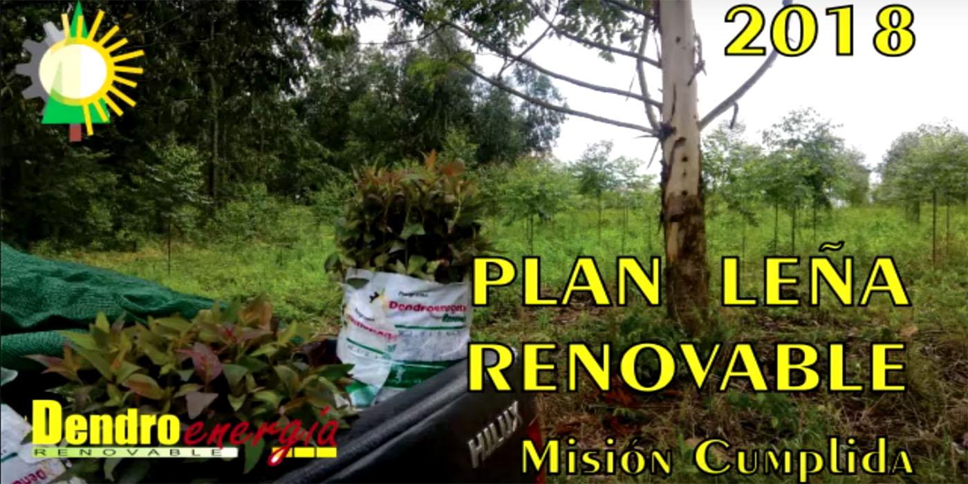 misiones leña renovable