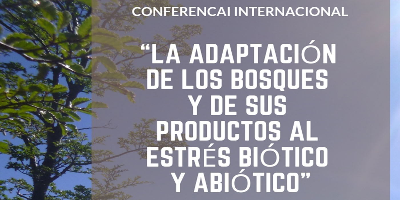 bariloche conferencia internacional bosques
