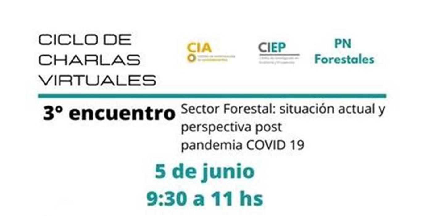situación actual sector forestal