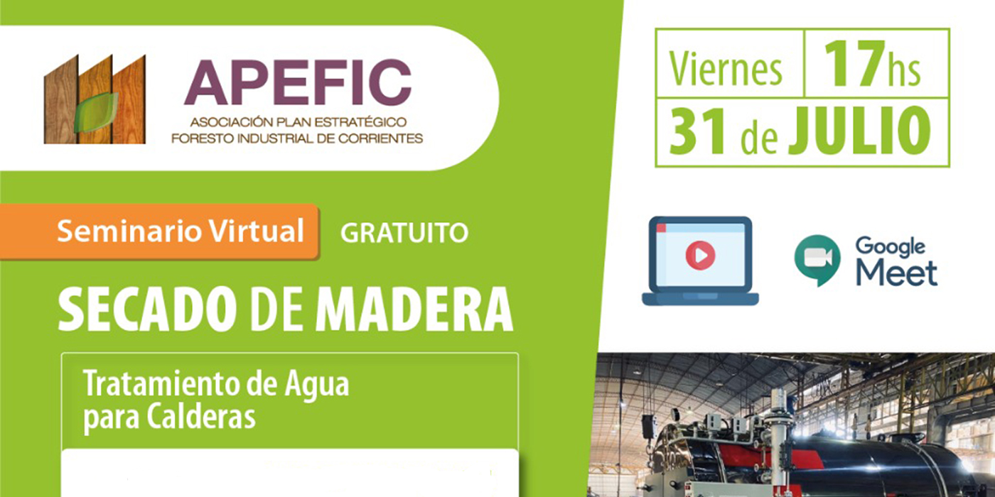seminario virtual secado apefic