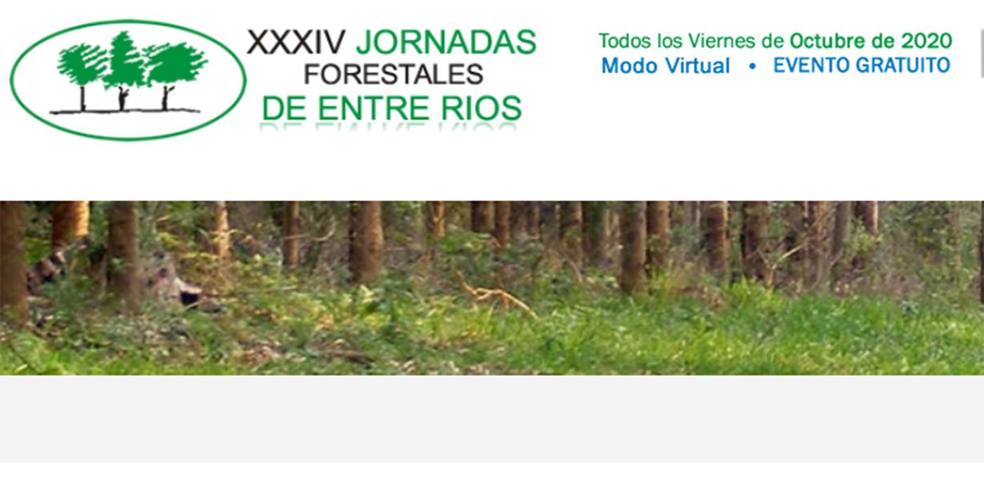 jornadas forestales viernes 2