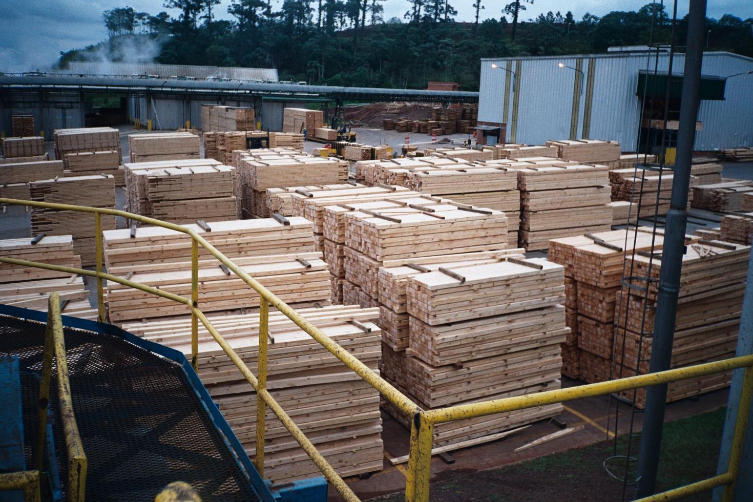 CAME caída madera muebles