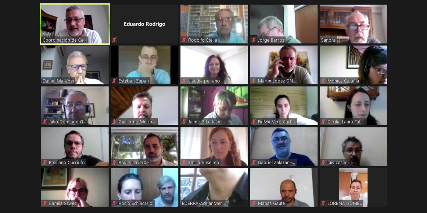 reunión virtual comisión asesora