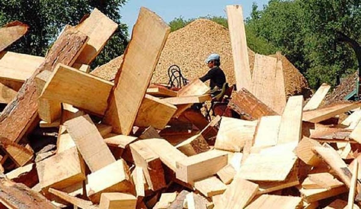 residuos madereros en GBA