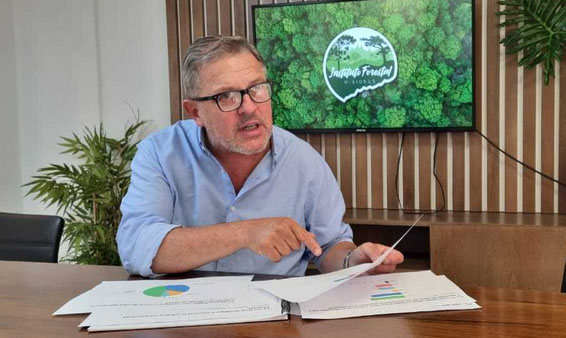 Instituto Forestal precios chips raleos