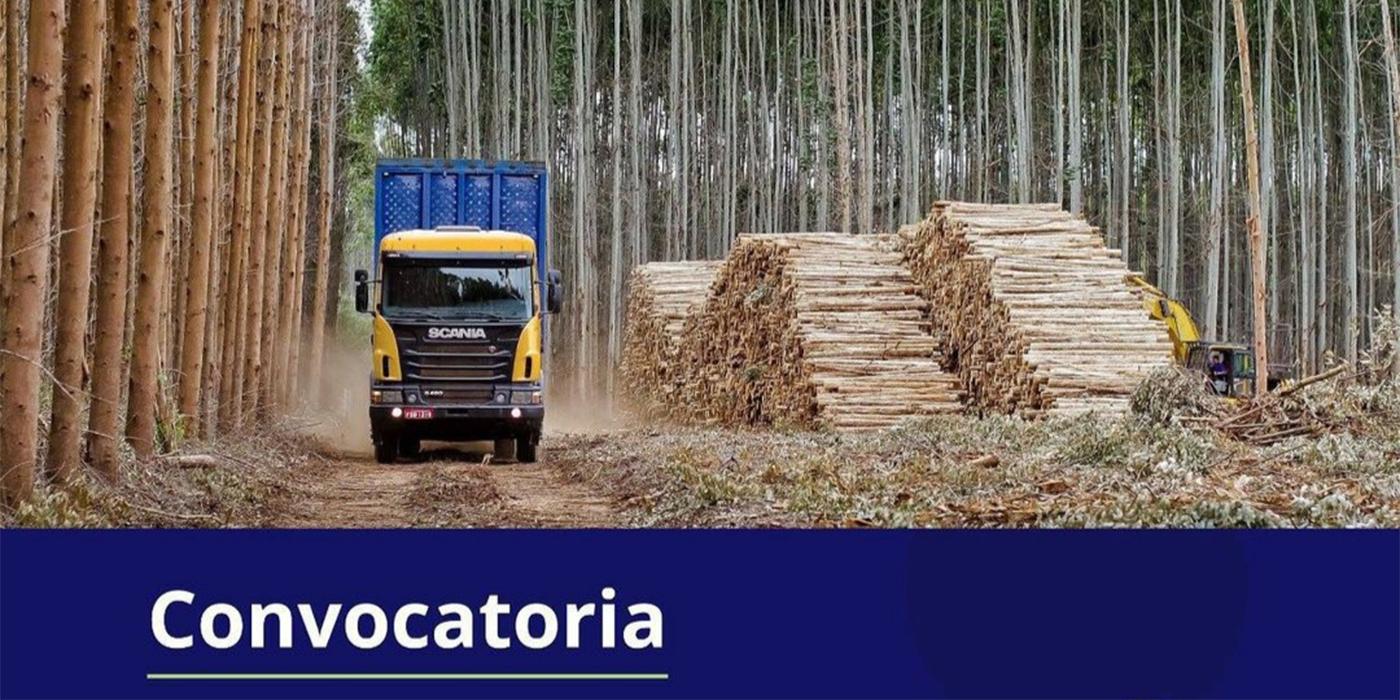 corrientes créditos foresto industriales