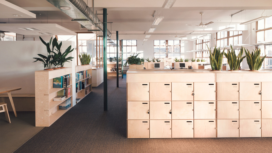 plantillas de muebles de madera Greenpeace oficinas