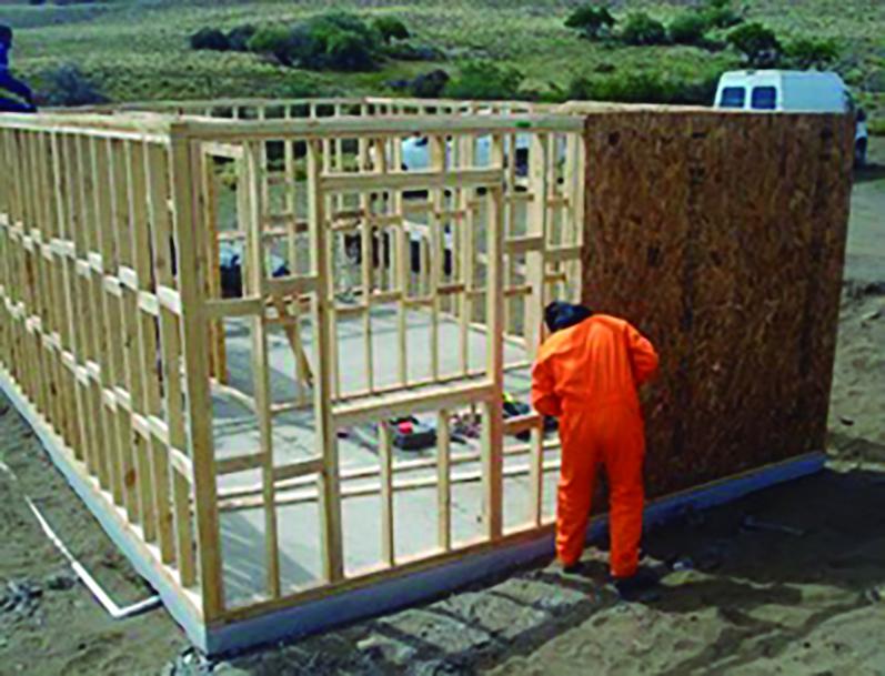 pino ponderosa construcción viviendas