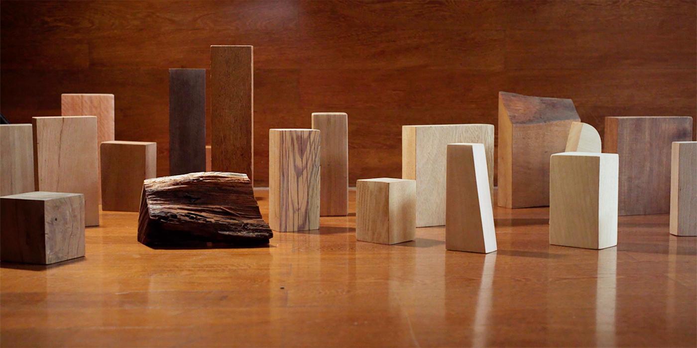 cómo elegir madera proyecto