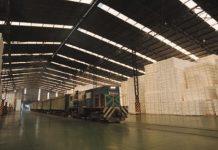 exportaciones forestales chile