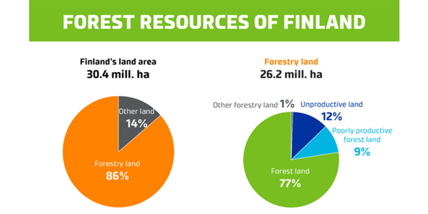 finlandia combustibles madereros