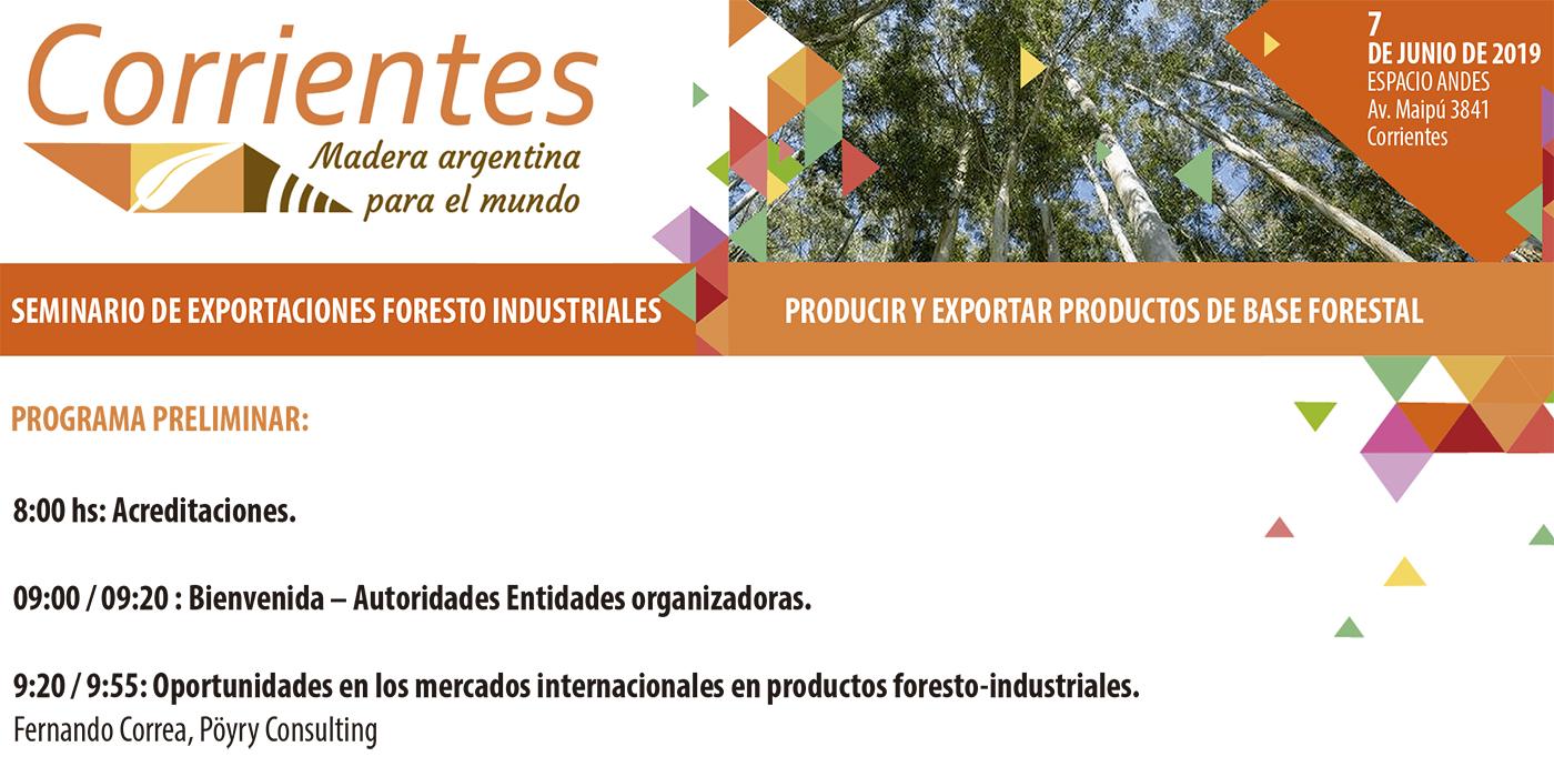 seminario internacional 7 junio corrientes