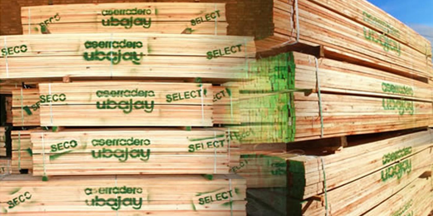 precios rentabilidad mercado eucalipto